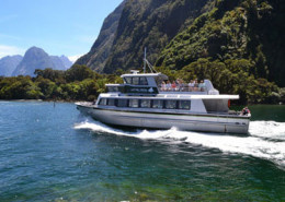 Milford Sound Tour - Number 1 on Tripadvisor